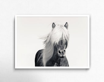 Horse Photo, Wilderness Print, Horse, Printable, Horse Print, Horse Decor, Horse Photography, Black and White Photography, Horse Art, Poster