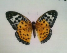butterflies Batiste