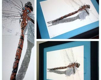 Pearl Dragon Fly