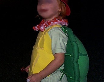 Great for youngsters!  Custom made Franklin Turtle Costume