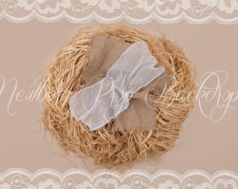 Newborn Digital Backdrop (raffia/nest/basic)