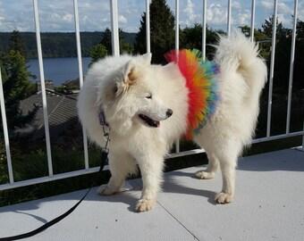 Rainbow / Pride Large Dog Tutu Skirt