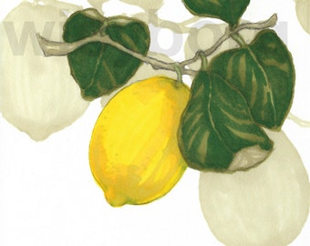 Lemon - Original promarker illustration