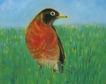 Robin Print, bird art