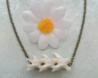 Bone necklace: Ethically sourced squirrel spine necklace