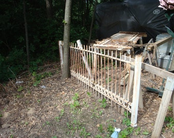 Iron gate and 2 sections of fence.