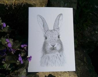 Daisy the Rabbit Greetings Card