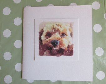 Cute Dog Blank Birthday / Greeting Card