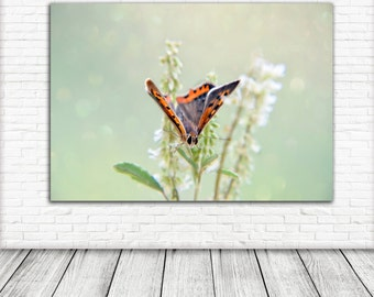 butterfly Art Print, Printable Wall Art, Photography, Wall Art, Digital Download, Nature print, bokeh
