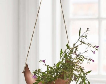 Fly Me To The Moon Hanging Planter - Air Plant Climbers Succulent Indoor Pot