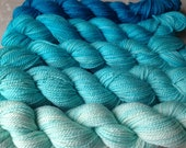 Ombre Gradient Kit--Turquoise