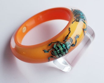 Orange lucite bracelet with real exotic beetles