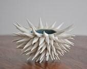 Denim Blue Urchin Bowl -  White Sculpture Beach Decor Coastal