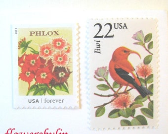 Unused Rustic Nature Postage Stamps, Wildlife Vintage Flower Images, Mail 20 Wedding Invites 2 oz 68 cent postage, bird animal floral stamps