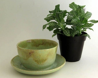 Ceramic Planter with Attached Saucer - Succulent Planter - Ready to Ship
