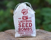 Ladybug Seed Bombs for Wildflowers Garden