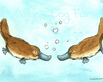 Swimming Platypus Love  -Original Watercolor painted print