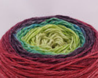 Curiouser and Curiouser Panoramic Gradient, 100g Corriedale, dyed to order
