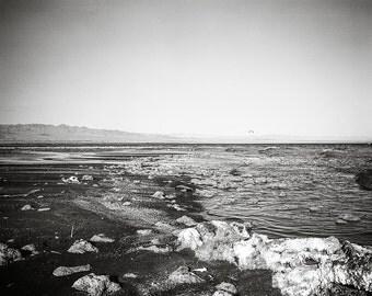 Beach Photography, Salton Sea, California Photography, Black and White Film, Surreal Print, Grainy Film, Dreamscape, Modern Decor, Ocean Art