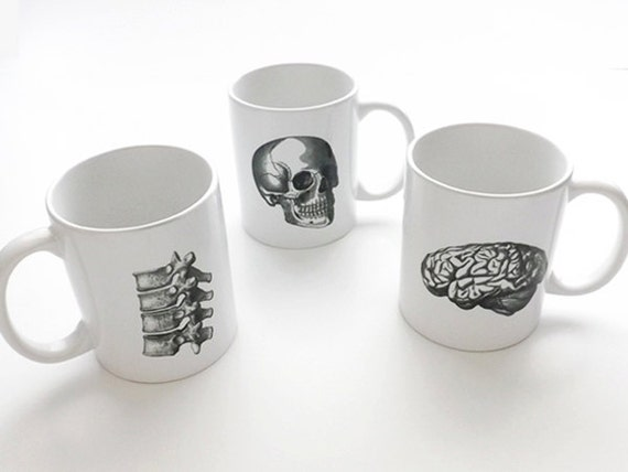 Anatomy coffee MUGS halloween skull brain physician assistant male nurse practitioner medical student gifts graduation biology goth spine