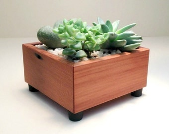 Succulent Planter Box, Square, Succulent Garden, Centerpiece Arrangement Planter, Cedar Wood