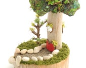 TINY Handmade Miniature Fairy House, OOAK, Mossy Fairy House, Fun Details, Handmade from Naturals by Expert & Author Janit Calvo