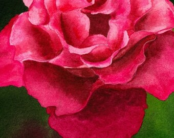 Flower Painting, Original Watercolor Painting, Back in Bloom, Rose, Red, Flower, Fine Art, Realistic