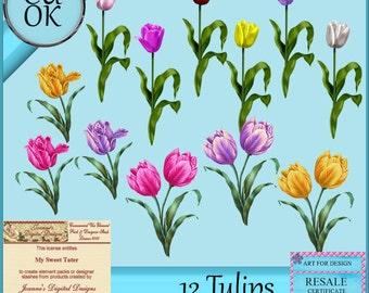 CU 12 Tulips Digital Scrapbook Elements - Clipart