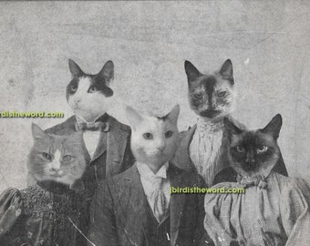 5x7 Custom Vintage Antique photograph rendering with 5 of your pets FREE SHIPPING in the USA