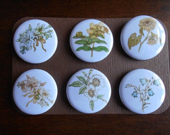 Kate Greenaway Flowers-Decorative MAGNETS-set of six (6)