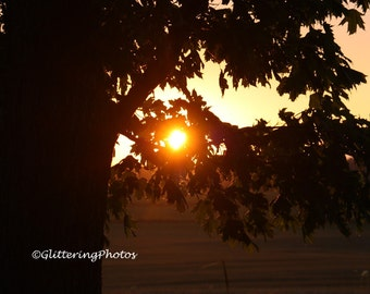 Sunset, Rural, Farmland, Stilesville, Indiana, Fine Art, Photograph, Print, 8 x 10, Glossy