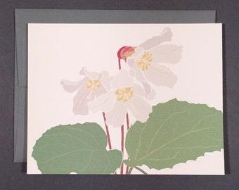 Oconee Bells Card Set