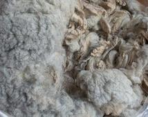 Light Silver Grey CVM Raw Fleece Spinning Knitting Crochet