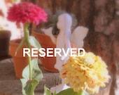 Reserved for mebeemissy