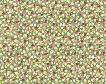 American Jane Fabric -Bread N Butter for Moda Green Floral - 21691 13