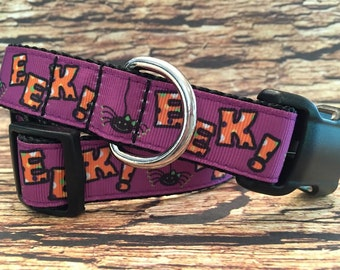EEK!, It's a Spider Dog Collar for Halloween in Sizes M - L - XL