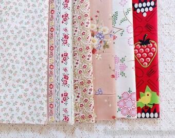 S040 Fabric Scraps Bundle Set - Shabby Chic Cross Stitch Style Rose Paisley Daisy Nordic Floral Stripe Fruit Garden (6PCS, 9x9 Inches)