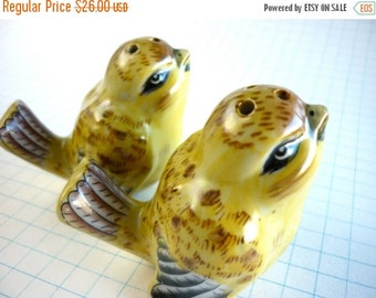Vintage Salt and Pepper Porcelain Shakers