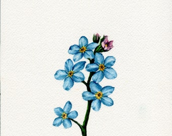 """Original """"Forget-Me-Not"""" Watercolor Painting"""