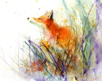 Contemporary Limited edition PRINT of original watercolour painting 'red FOX' original animal art illustration with certificate
