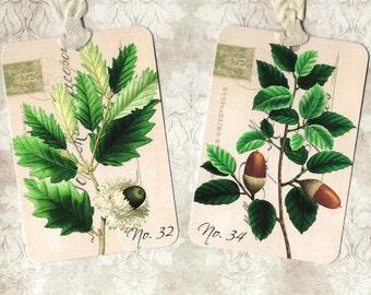 Tags, Vintage Botanicals, Oak Leaves, Acorns,  Autumn Tags