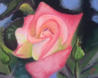 Spring Rose - Original Pastel Drawing by Jamies Art 8x10