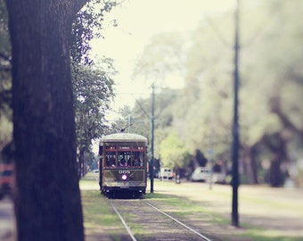 "New Orleans Streetcar Print ""St Charles Ave"" Photograph, NOLA Art, City, Travel  Photography. 8x10, 11x14, 16x20, 20x24, 24x36, 30x40"