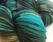 Mystery base hand dyed yarn