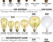 "Antique Light Bulbs and LED Bulbs Many Styles!  Tungsten Filament Edison Globe, Radio, LED Edison and 5"" Globes Vintage Edison Bulb"