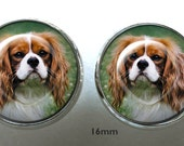 Custom Cavalier Post Earrings ~ Custom Gift ~ Pet Jewelry ~ February Birthday ~ Any Pet Photo ~ Pet keepsake ~ Teacher gift