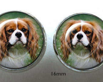 CUSTOM Cavalier Post Earrings ~ Pet Jewelry ~ June birthday  ~ Any Pet Photo ~ Pet Keepsake ~ Dog Earrings