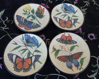 Four ceramic Butterfly Plates- Black bases no signature found