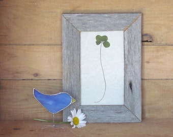 Four Leaf Clover in Handmade Reclaimed Barnboard Wood and Upcycled Glass Frame OOAK Botanical Gift Idea St. Patrick's Day Decor