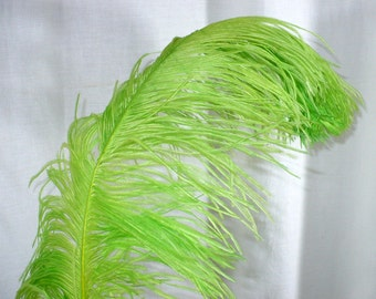 Victorian Green Ostrich Feather Plume, Millinery Supply